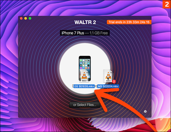 waltr 2 activation code